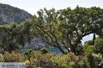 Paleokastritsa (Palaiokastritsa) | Corfu | De Griekse Gids - foto 13 - Foto van De Griekse Gids