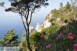 Paleokastritsa (Palaiokastritsa) | Corfu | De Griekse Gids - foto 19